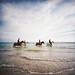 Horse riders on a French beach by lomokev