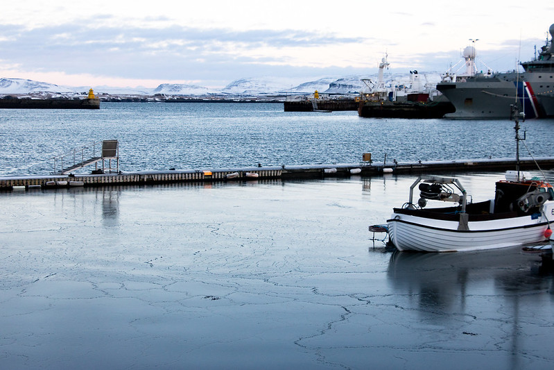 Ice starting to form on the harbour