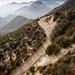 Angeles National Forest by John Watson / The Radavist