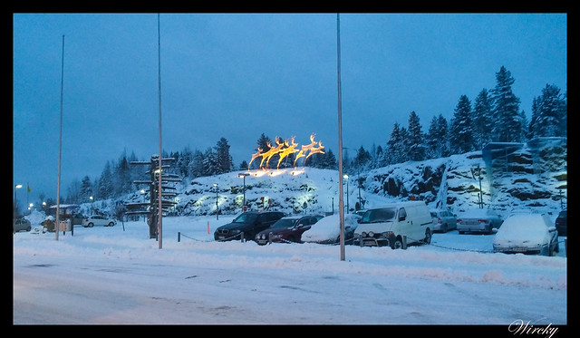 Laponia viaje Helsinki Rovaniemi - Renos luminosos sobre la colina