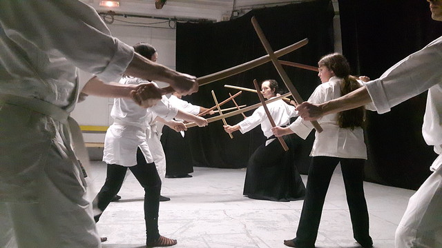 Stage initiation aux deux sabres [Niten ichi ryu] album public