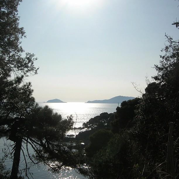 tellaro #palmaria #isola #island #isla #lerici...