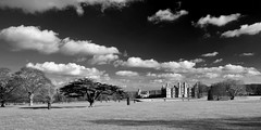 Burghley House and Park