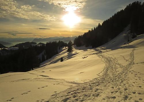 winter sunset panorama snow ski mountains forest germany bavaria shadows view path snowshoes geigelstein aschau schreckalm