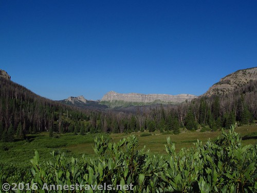 An early view on the trail to Bonneville Pass. Sublette Peak is the little peak to the left of the unnamed ridgeline. Shoshone National Forest, Wyoming