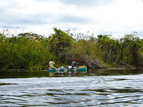 The New River: des pêcheurs béliziens