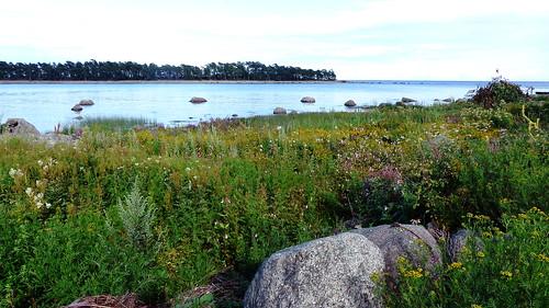 sea summer seascape finland landscape geotagged july balticsea shore fin seashore archipelago 2015 kaunissaari pyhtää kymenlaakso pyttis pitkäniemi 201507 fagerö suurilahti 20150731 geo:lat=6034777207 geo:lon=2677958250