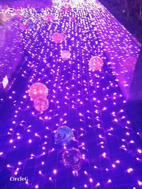 NEW TOWN PLAZA SHA TIN HONGKONG 沙田 新城市廣場 2015 CIRCLEG 聖誕裝飾 (22)