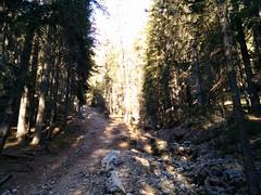 Hochalpenkopf Pragser Dolomiten