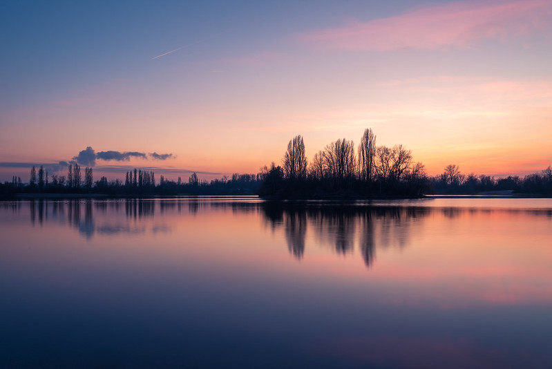 Sonnenuntergang am Binsfeld bei Speyer