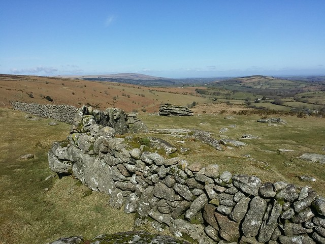 Wall between Coombe Down Tor