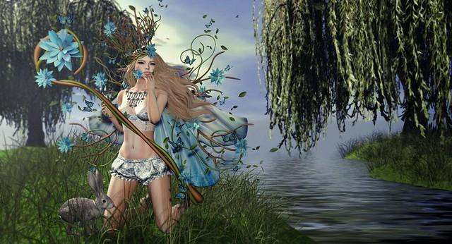 Danaus Spring
