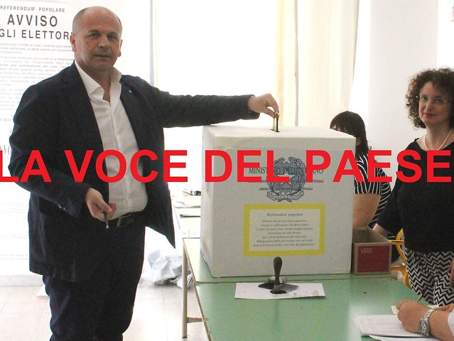 domenico vitto referendum