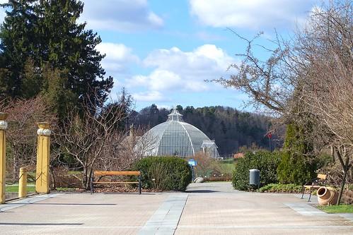 Victoria greenhouse
