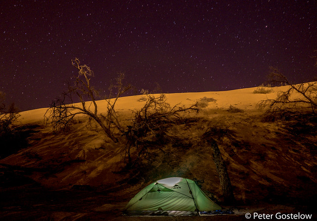 Camping beside the Wahiba sands