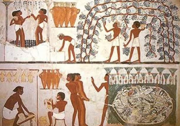 Food preservation in Ancient Egypt
