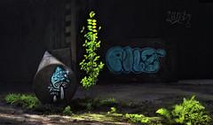Urbex Nature