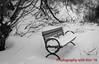 01162016-winter_publicareas-9392