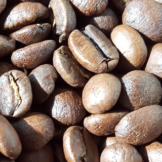 Fresh from the roaster, Guatemala Finca Rosma. Plum. Grape. Apple. Caramel. #caffedbolla #slc #singleorigin #coffeeroasting #coffeebeans