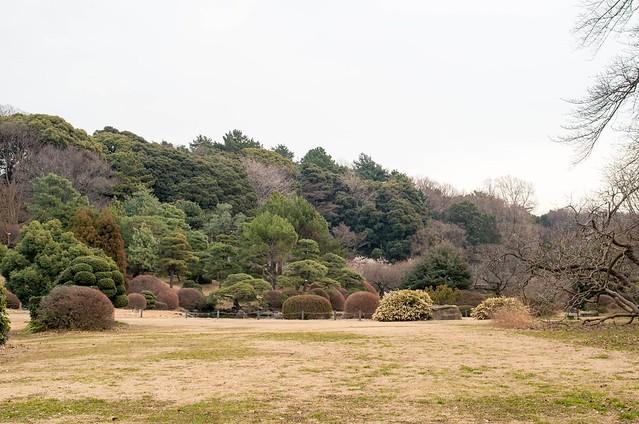 東京大学付属植物園