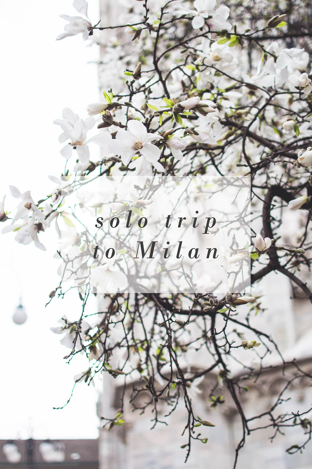 Solo Trip To Milan
