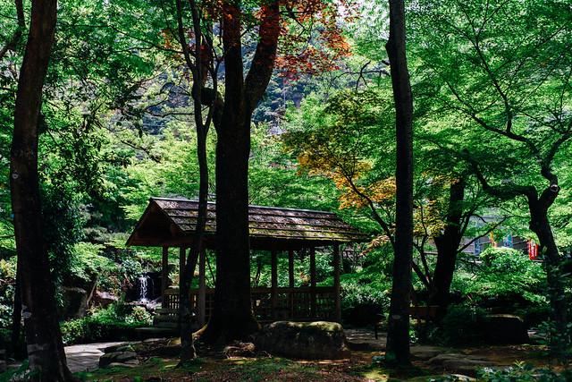 Gifupark_02