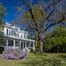 Pamlico House B&B