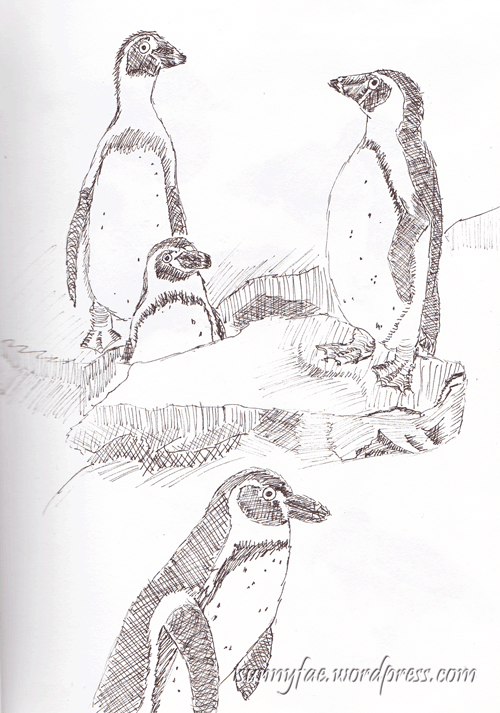 penguin-biro-sketch