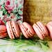 Erdbeer Macarons - Strawberry Macarons by vampire-carmen