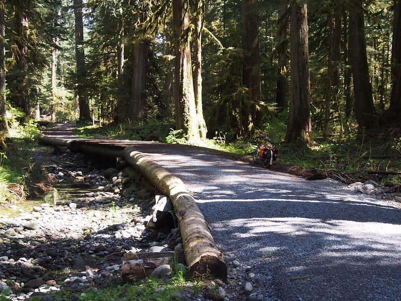 Carbon River Trail Bridge