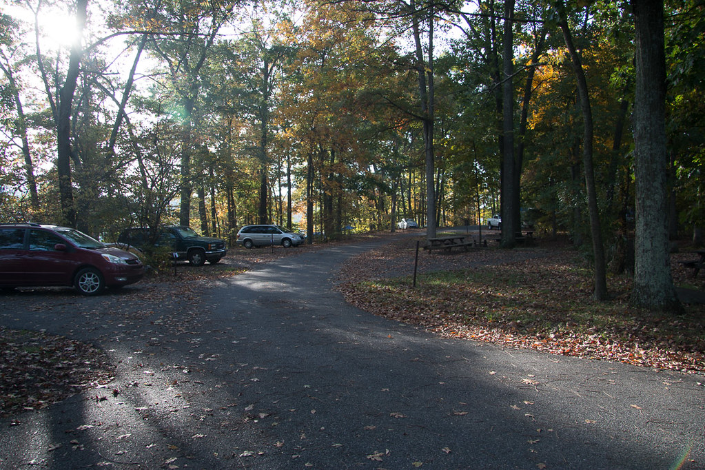 Campsites at Loop A