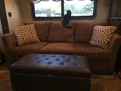 I Love RV Life - New Sofa