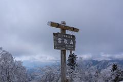 雲取山の山標
