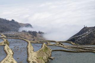 Duoyishu - Yuanyang - Yunnan - China