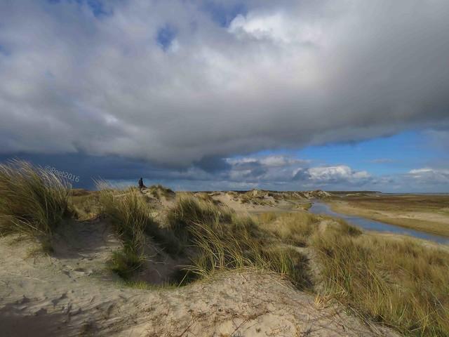 De Slufter Texel