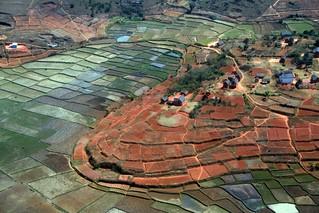 Rizières et Tanety, Antananarivo, Madagascar