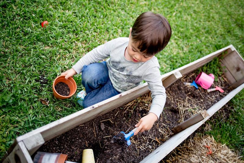 cute & little blog | dylan garden box dirt pit