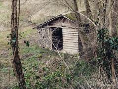 Family hiking on a trail near Condrieu / Randonnée en famille sur le sentier de l'Arbuel à Condrieu (Pilat - France) #randonnee #instawalk #hike #hiking #nature #instanature #naturelovers #naturelover #house #tinyhouse #hut #shack #forest #country #countr