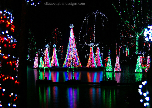Zoo Christmas Lights