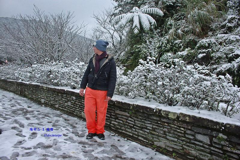 2016-台北陽明山-瑞雪-難得一見的雪白山景-17度C隨拍 (41)