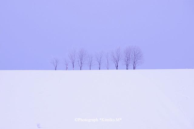 10本の木