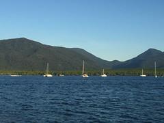 Dotting the Marina