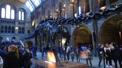 Natural History Museum Kensington Jan 16 (6)