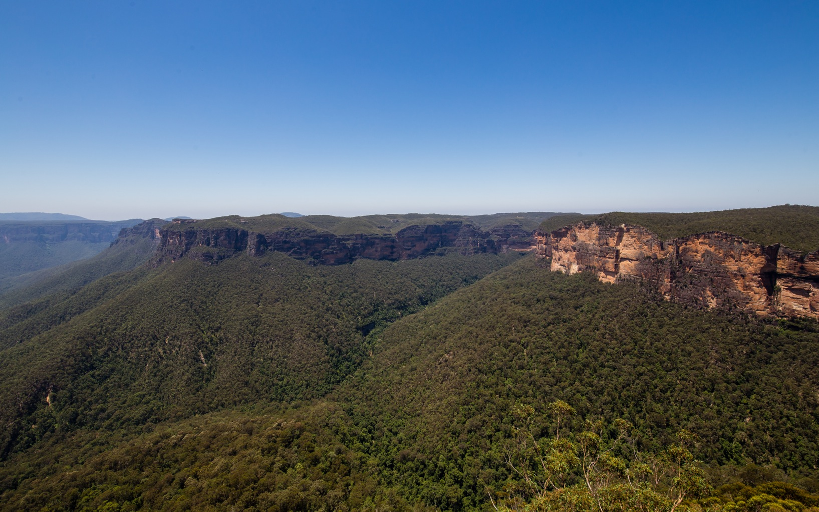 Blue Mountains-8648