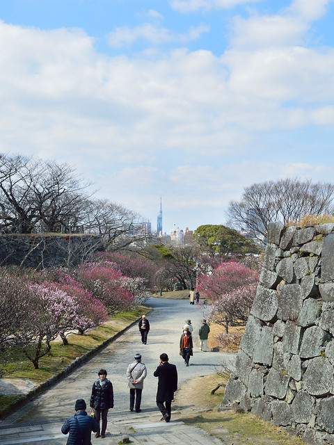 舞鶴公園・梅園(福岡タワーと)