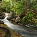 Above Mohawk Falls, Ricketts Glen State Park by Bryan Carnathan