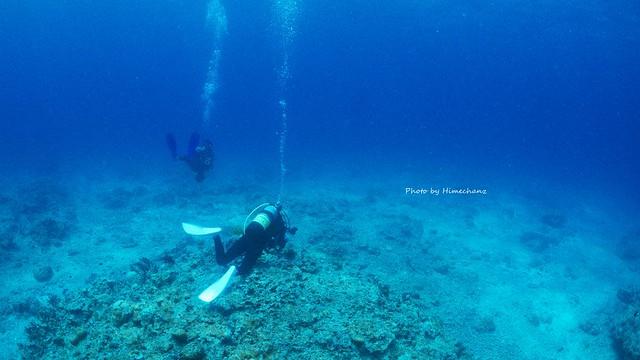 低い水温でも快適なダイビング