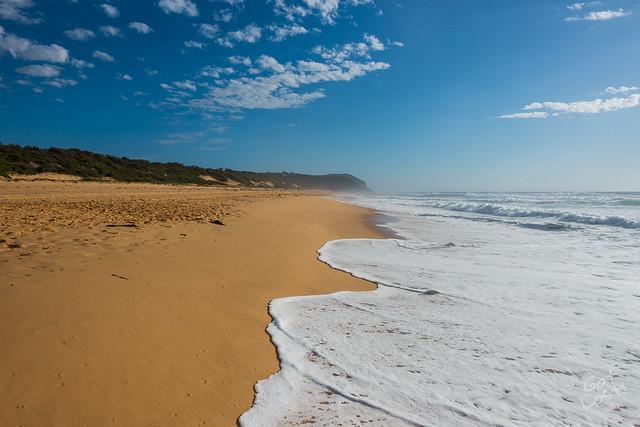 Wamberal Beach, NSW, Australia
