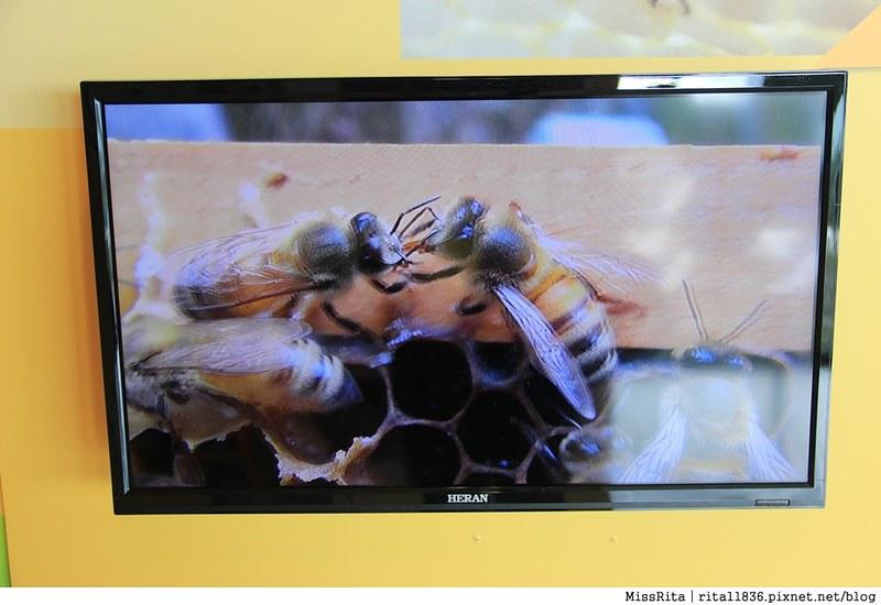 花蓮好吃 花蓮好玩 花蓮鳳林 家咖哩 蜂之鄉 家咖哩Jiacurry 蜂之鄉鳳林蜜蜂生態教育館  花蓮生態旅遊景點 花蓮室內 家咖哩鳳林27