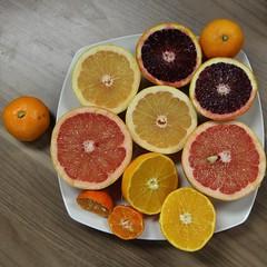 IMG_1514_A cornucopia of citrus